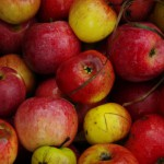 16 - Naturtag Apfelsaft